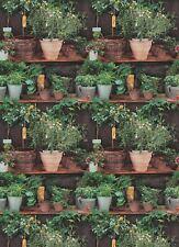 Erismann Potted Plants Wallpaper Floral Botanical Kitchen Paste The Wall Vinyl
