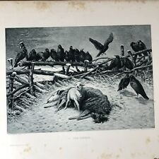 Art photogravure The orphan by A. F.A. Schenck 1889
