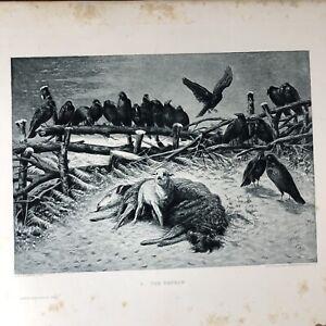 Art photogravure The orphan by A. F.A. Schenck 1889
