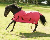 Rhinegold Konig Std Neck Medium 200gsm Waterproof Horse Turnout Rug Foal to Full
