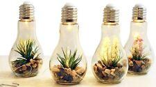 4x LED Deko Glühbirne mit Kunstpflanze Glas Glühlampe Hängelampe Balkondeko