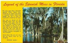 Legend of the Spanish Moss in Florida - one of nature's wonders  post card