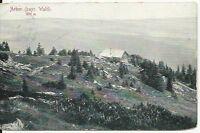 Ansichtskarte Arber im Bayr. Wald - sehr alte Karte mit Berghütte - 1911 - s/w