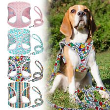 Reflective Pet Dog Harness and Leash Soft Mesh Walking Vest for Small Medium Dog