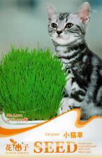 Original Package 200 Cat Grass Seeds For Your Cat Food Pet Grass Seed L001 Hot