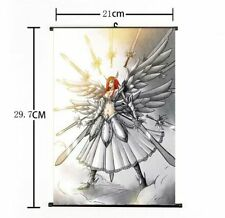 Hot Japan Anime Fairy Tail Natsu Erza Scarlet Art Home Decor Poster Wall Scroll