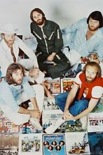 The Beach Boys Concert 11x17 Mini Poster