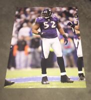 3 Different 8x10 Glossy Photos Of Ray Lewis - Baltimore Ravens