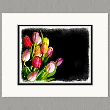 Tulip Flower Original 8x10 Painted Style Art Print Matted to 11x14