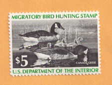 Us Federal Duck Hunting Stamp $5 Canada Geese Rw43 - 1976 New Mint