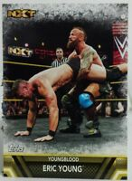 2017 TOPPS WWE NXT FINISHERS & SIGNATURE MOVES ERIC YOUNG YOUNGBLOOD NO. F-39