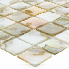 Muster Mosaikfliesen Muschel Kordon Perlmutt Hellbeige