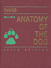 Miller's Anatomy of the Dog-ExLibrary