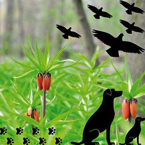 Set Warnvögel Hund Welpe Pfötchen Fenster Scheibe Schutz Deko Folie Aufkleber