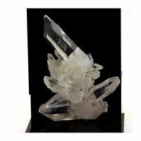 Quartz. 150.9 ct. La Gardette, Bourg d'Oisans, France. Rare.