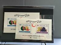 Afghanistan 1962 Red Crescent Day mint never hinged stamps sheets   R26671