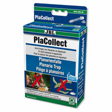 JBL PlaCollect Planaria trap to combat flatworms