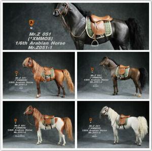 Mr.Z MRZ051 1/6 Scale Animal Model Arabian Horse Soldier Figure Body Collection