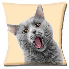Funny Grey Cat Cushion Cover 16x16 inch 40cm Amber Eyes Photo Print on Cream
