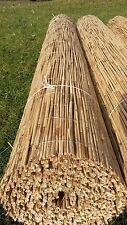 Schilfmatte Sichtschutz Schilfrohrmatte Windschutz Strohmatte  160 cm x 600 cm !