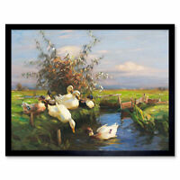 Koester Seven Ducks Ditch Birds Nature Painting Art Print Framed 12x16