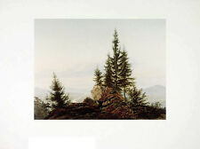 Caspar David Friedrich vistas al valle del Elba póster son impresiones artísticas imagen 72x90cm