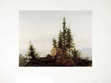 Caspar David Friedrich Panorama ins Elba poster stampa d'arte immagine 72x90cm
