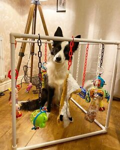 Puppy Gym Play Toys Jungle Activity Whelping