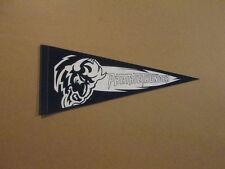 IHL Bloomington Prairie Thunder Vintage 2008 Pennant #1