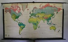 Schulwandkarte hermosas viejo mundo mapa vegetación 213x127cm vintage World Map 1954