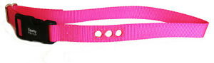 """2  Deluxe Bark Collar Compatible Strap PBC-302 PDBC300 Teal& Neon Pink- 3/4"""""""