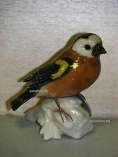 +# A001482_15 Goebel Archiv Muster Vogel Bird Fink Finch Plombe 38-017