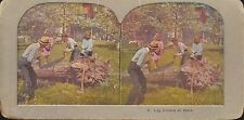 Coloured Vintage 3D Stereoview Card - Log Cutters at Work