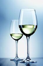 6 Weißweingläser 312 ml SCHOTT ZWIESEL  CLASSICO  8213/2 Weißweinglas 106221