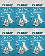 6 Mesi Pestrroy Antipulci & Tic trattamento per cani grossi il prezzo di 5