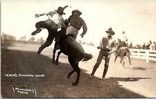RPPC Irwin's Bucking Mule Cowboy Rodeo Real Photo Postcard