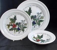 Portmeirion HOLLY & IVY Dinner Plate, Salad Plate, Oatmeal Bowl GOOD CONDITION
