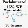 50 grams Paclobutrazol 15% WP Water soluble Plant Growth Hormone