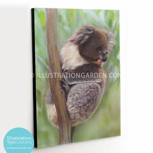 'Pud' the Koala fine art print_stretched canvas_corrugated iron_Aussie Artist