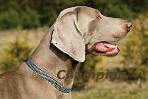 Semi Choke / Check Collar Chrome Chain 2 & 3 Rows All sizes Dog Control