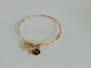 Alex and Ani Gold Tone Purple February Birthstone Bracelet