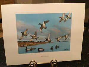 "Richard E. Bishop's Vintage Print ""BLUEBILLS"" Ducks flying and in water"