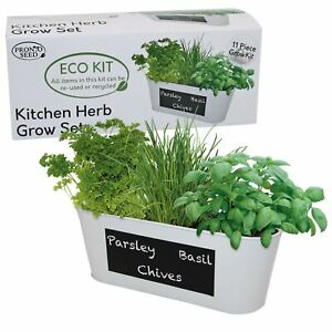 Kitchen Herbs Grow Your Own kit, Grow 3 Popular Herb With Chalk Board Planter