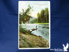 """Antique Litho PC Trout Fishing on """"Swiftwater"""" St. Joe River, Idaho Boat"""