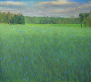 """""""Field of Chicory, Luck's Farm"""" by Duane Keiser"""