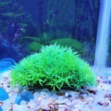 2PC Green Plastic Plant Artificial Water Grass For Aquarium Fish Tank Ornament .