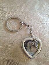 Pet Memorial Keepsake Photo Key Ring - Pet Loss Sympathy Bereavement Gift
