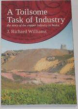 WALES COPPER INDUSTRY Welsh Mining Industrial History Parys Mountain Swansea
