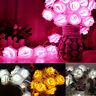 10-LED Rose Flower Fairy Wedding Party Garden Christmas Decor Xmas String Lights