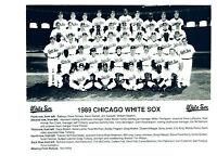1989 CHICAGO WHITE SOX 8X10 TEAM PHOTO  FISK WALKER  BASEBALL HOF USA MLB
